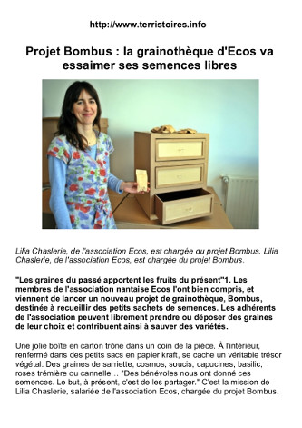 article-bombus
